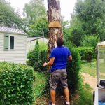 panneau accroché sur un arbre